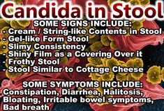 Candida In Stool | Candida Stool | Candida Die Off Stool | Yeast In Stool