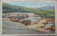 Vintage Linen Postcard - Mammoth Hot Springs Terraces - Yellowstone Park