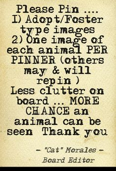 Please follow Board Rules: Adopt/Foster related pins only. Pins not related will be deleted. I may give time to edit/move the pin if appropriate.   NO GRAPHIC IMAGES - THESE WILL BE DELETED.     Join the Pet Products and Safety Board if you have causes, messages you want out BUT NO overly graphic images there either. Thank you.  Used @Pinstamatic (http://pinstamatic.com) to create image.