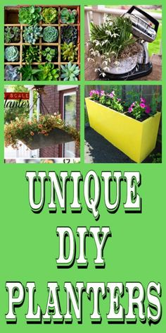 diy home sweet home: Unique DIY Planters
