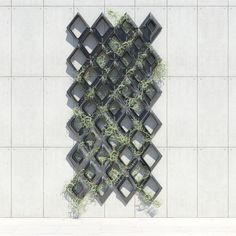 Parametric Vine Lattice | Austin Samson | Archinect