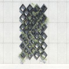 Parametric Vine Lattice | Austin Samson | Archinect