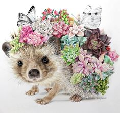 Buy Diy Full Square Diamond Painting Kits Creative Cute Animal Hedgehog and Succulents Pattern DIY Diamond Embroidery Cross Stitch Diamond Mosaic Rhinestone Picture Paste Crystal Needlework Decorative Painting at Wish - Shopping Made Fun Hedgehog Drawing, Hedgehog Art, Cute Hedgehog, Hedgehog Tattoo, Animal Drawings, Art Drawings, Dibujos Cute, Cross Paintings, Diy Painting