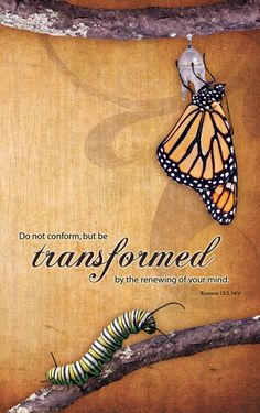 (Romans 12:2) Do not conformto the pattern of this world,but be transformed by the renewing of your mind.Then you will be able to test and approve what God's will is—his good, pleasingand perfect will.