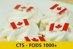 CTS FODS 1000+ - Learn Canola Teacher Resources, Learning, Studying, Teaching, Onderwijs