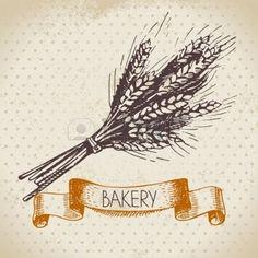 Хлебобулочные эскиз фон. Vintage рисованной иллюстрации пшеницы photo