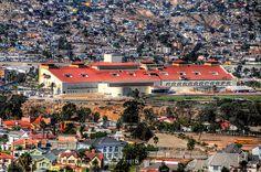 Galgódromo (Dog Track), Tijuana.