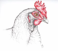 Big Red My Images, Rooster, Big, Artwork, Animals, Art Work, Animais, Work Of Art, Animales