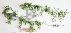 Eucalyptus garlands, floral garlands, wedding garlands, photo, potoprops, flower garlands, https://www.facebook.com/HandmadeByEncza/