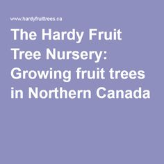 The Hardy Fruit Tree Nursery: Growing fruit trees in Northern Canada