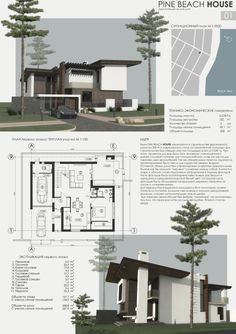Pine beach house
