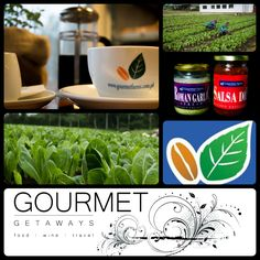 Organic Gourmet Farms Tour - Meat and Travel Tagaytay, Love To Meet, Organic Farming, Wine Recipes, Farms, Philippines, Salsa, Tours, Gift Basket