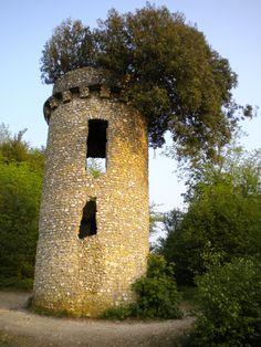 Broadwood's Folly Box Hill