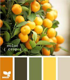 Orange - colour palette