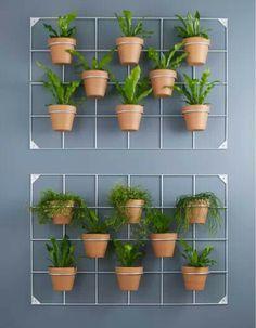 Untitled - Emma Lee home Hanging Plants On Fence, Hanging Herbs, Vertical Garden Design, Vegetable Garden Design, House Plants Decor, Plant Decor, Garden Design Pictures, Small Balcony Garden, Walled Garden