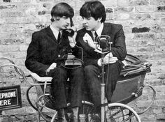 Ringo & Paul perched in a buggy, hamming around.