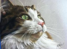 "Custom Color Pastel Animal/Pet Drawing (Any animal, cat, horse, dog, etc.) 11"" x 14"". $165.00, via Etsy."