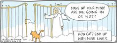 How cats end up with nine lives.