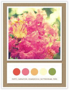Color Card 051: Poppy, Carnation, Orangesicle, Buttercream, Fern   The Inspired Bride
