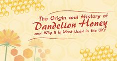 The Origin and History of Dandelion Honey and Why It Is Most Used in the UK Types Of Honey, Honey And Co, Pure Honey, Natural Honey, Raw Honey, Honey Mead, Dandelion Plant, Blood Pressure Control, Creamed Honey