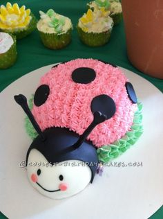 Twin Ladybug Smash Up Birthday Cakes ... This website is the Pinterest of birthday cakes