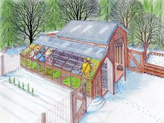 Backyard sustainability, greenhouse and chicken coop for year round use. gardening-idea