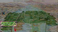 《ゴーストブロック》 ジンファンデル ペリッサ・ヴィンヤード (エステート), オークヴィル, ナパヴァレー [2014] Ghost Block Wine Zinfandel Pelissa Estate Vineyard, Oakville, Napa Valley 750ml [赤ワイン カリフォルニアワイン]:カリフォルニアワインあとりえ