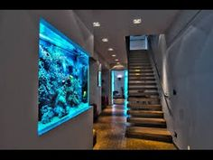 home aquarium ideas & home aquarium ; home aquarium ideas ; home aquarium living rooms ; home aquarium small ; home aquarium tanks ; home aquarium aesthetic ; home aquarium ideas small ; home aquarium freshwater Aquarium Mural, Aquarium Design, Aquarium Fish, Aquarium Ideas, Aquarium House, Freshwater Aquarium, Aqua Aquarium, Fish Aquariums, Aquariums Super