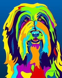 Multi-Color Bearded Collie Dog Breed Matted Prints & Canvas Giclées