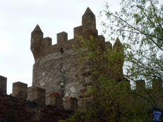 El castillo de Arañó o castell de l'Aranyó en catalán está documentado desde el siglo XIV. Se encuentra ubicado en la comarca de La Segarra, en la provincia de Lérida. Castillo de Arañó o Castell de l´Aranyó