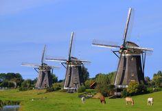 #Windmills - Drie molens, #Leidschendam. http://www.roanokemyhomesweethome.com/