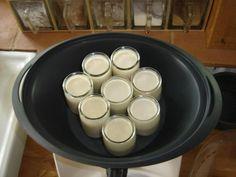 yaourts au thermomix