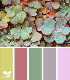 Designology Interiors: Color palettes