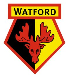 #WatfordFc  kiss the badge. Go on. Kiss it. #Goalhangers.co.uk