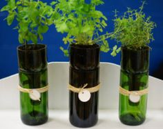 Wine Bottle Herb Planter (self watering)