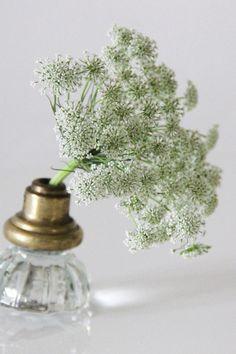 Cómo transformar un pomo de cristal en un mini-jarrón para vuestro centro de mesa? Hoy en el blog os lo contamos! http://www.unabodaoriginal.es/blog/donde-como-y-cuando/decoracion/diy-jarrones-con-pomos-de-cristal