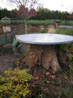 We have a very large tree on our property that we'd like to take out, I'd love to put a concrete top on it! #treestumptable