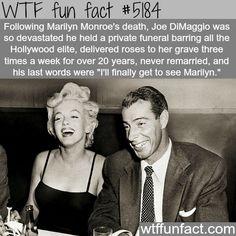 wtf-fun-factss:  Joe DiMaggio and Marilyn Monroe - WTF fun facts