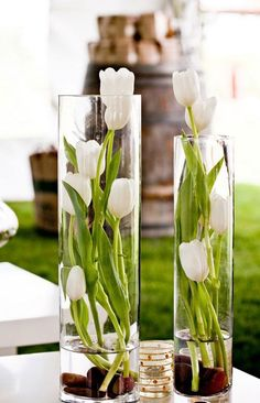 Spring decoration with tulips: arrange flower arrangements yourself- Frühlingsdeko mit Tulpen: Gestecke selber arrangieren white tulips in tall glass vases – gravel in the water - Easter Flowers, Diy Flowers, Flower Vases, Spring Flowers, Wedding Flowers, Tulip Wedding, Elegant Wedding, Centerpiece Flowers, Flower Ideas