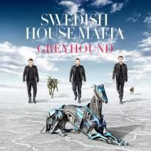 Swedish House Mafia - Greyhound  This is THE dance music track of 2012.