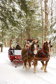 Sleigh Ride in the Snow....may not do this in Michigan, but it will happen....talking about Colorado, Utah or Wyoming or we could head East to Vermont or New Hampshire.
