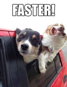 Faster..