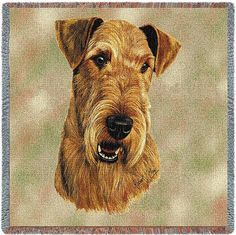 Airedale Terrier Dog Portrait Throw Order an oil painting of your pet today at petsinportrait.com