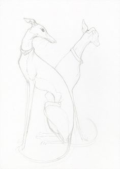 Today and Tomorrow- Greyhound Sketch Art Dog Print by Angelswillow on Ebay