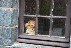 Hi...! | Misiu our teddy bear