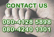 Contact for Anti Termite Control Bangalore