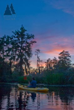 New Orleans Kayak Swamp Tours - Gravity Trails Guided Tours close to the French Quarter. New Orleans Swamp Tour, Louisiana Art, Kayak Tours, Trail Guide, Door County, Paddle Boarding, Tour Guide, Kayaking, Cruise