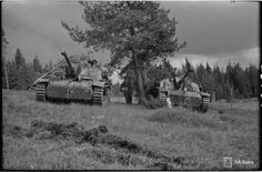 Finnish Stug III Waiting attack order. Pin by Paolo Marzioli