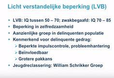 Webcollege Jeugdreclassering 2. Sheet LVB.