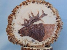 Bull Elk Painted Antler Art Carving - Carved Burr Rosette Artist Signed